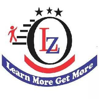 The Learning Zone Institute