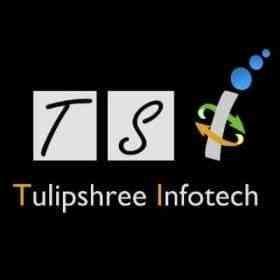 Tulipshree Infotech